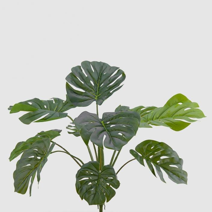 plastična monstera